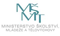 3-msmt